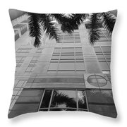 Reflections On The Building Throw Pillow