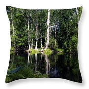 Reflections On The Ocklawaha River  Throw Pillow