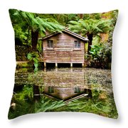 Reflections On The Pond Throw Pillow