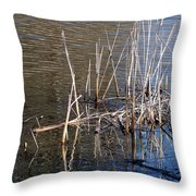 Reflections On The Yellow River Throw Pillow