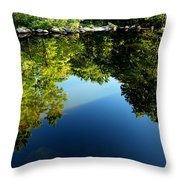 Reflections Trees Throw Pillow