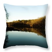 Reflections Throw Pillow by Valeria Donaldson