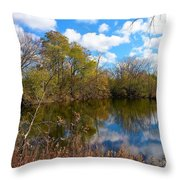 Reflective Cloudy Palatine, Il,  Library Pond Throw Pillow