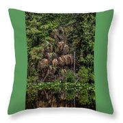 Reflective Colors Of Nature I I Throw Pillow
