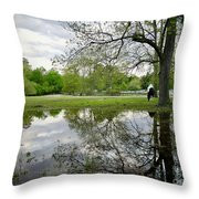 Reflective Field In Spring Throw Pillow