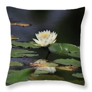 Reflective Lilly Throw Pillow