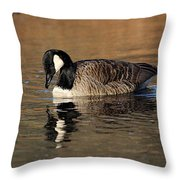 Reflective Moments Throw Pillow