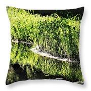 Reflective Shorelines Throw Pillow