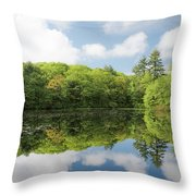 Reflecton On Tranquility Throw Pillow