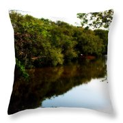 Reflects Throw Pillow