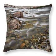 Refreshing Throw Pillow