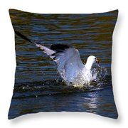 Refreshing Dip Throw Pillow by Amanda Struz