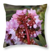 Refuelling In Flight Throw Pillow