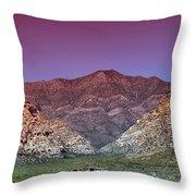 Regal Desert Throw Pillow
