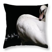 Regal Plumage Throw Pillow