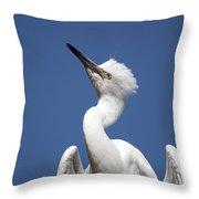 Regal Snowy Egret Throw Pillow
