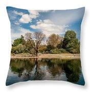 Regents Park Throw Pillow