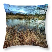 Reifel In Winter 1 Throw Pillow