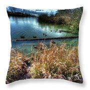 Reifel In Winter 2 Throw Pillow