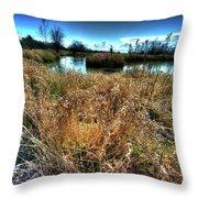 Reifel In Winter 3 Throw Pillow