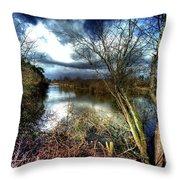 Reifel In Winter 4 Throw Pillow