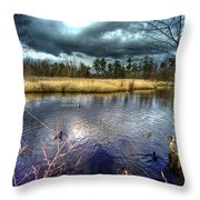Reifel In Winter 5 Throw Pillow