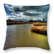 Reifel In Winter 8 Throw Pillow