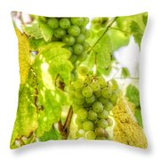 Riesling Harvest IIi Throw Pillow
