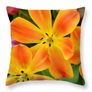 Relaxed Tulips Throw Pillow