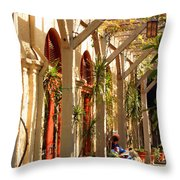 Relaxing In The Breezeway Throw Pillow