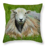 Relaxing In The Pasture Throw Pillow