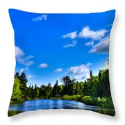 Relaxing On The Moose River Throw Pillow