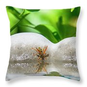 Reflected Little Stinger Taking A Sip 2 By Chris White Throw Pillow