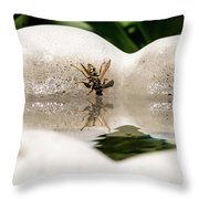 Reflected Little Stinger Taking A Sip By Chris White Throw Pillow
