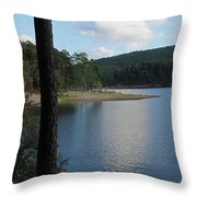 Relecting Afternoon Throw Pillow
