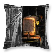 Relic From Past Times Throw Pillow