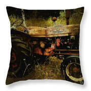 Relic In The Field Throw Pillow