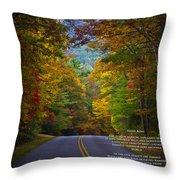 Relief Road  Blue Ridge Parkway Throw Pillow by John Haldane