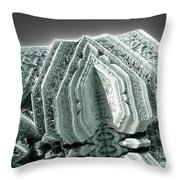 Reliquary Throw Pillow