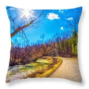 Reluctant Ontario Spring 3 - Paint Throw Pillow