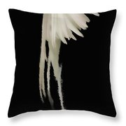 Remaginary Throw Pillow