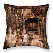 Remaining Ruins Throw Pillow