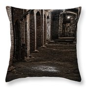 Remains  Throw Pillow