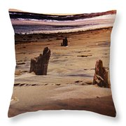 Remains Of A Pier Throw Pillow
