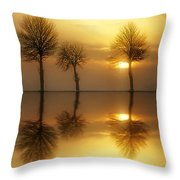 Remains Of The Day Throw Pillow by Jacky Gerritsen