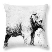 Rembrandt: Elephant, 1637 Throw Pillow