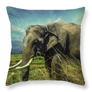 Remember Elephant Throw Pillow