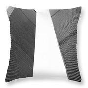 Remember Throw Pillow by Joann Vitali