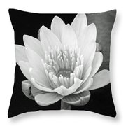 Remember When II Throw Pillow