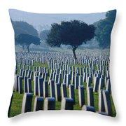 Remembering Walt Bem Throw Pillow